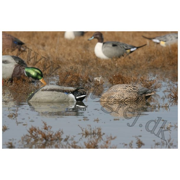 GreenHead Feeders, No-Head, 2 stk.